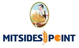 mitsides-logo